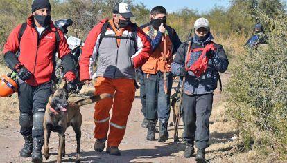 Canes. Perros rastreadores de distintas fuerzas se sumaron a los operativos de la policía puntana.