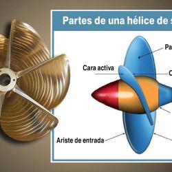 Las hélices de superficie poseen gran numero de palas, bordes de ataque filosos y de salida gruesos.