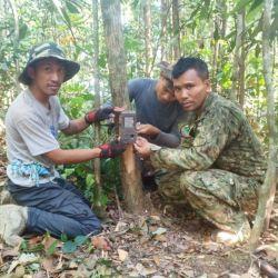 El hallagzo fue posible gracias a unas cámaras que fueron instaladas en el interior de la reserva natural camboyana.
