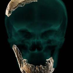 Presentaba características típicas de especies más antiguas de Homo que probablemente llegaron a Oriente Medio mucho antes que el Homo Sapiens.