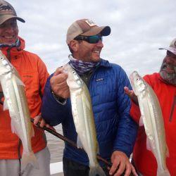 El Río de la Plata nos ofrece excelentes lugares para tentar a las grandes flechas de plata.