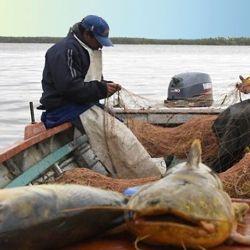La pesca deportiva se podrá llevar a cabo los días viernes, sábado y domingo.