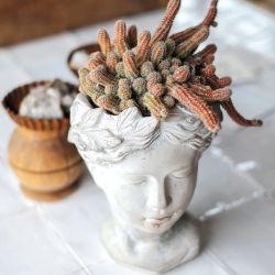 Aquí reinan los detalles que aúnan decoración y naturaleza, como esta simpática maceta con forma de escultura o un ahumador de hojas.