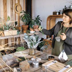 En la segunda planta Cecilia ubicó el invernadero donde alberga el estudio de Compañía Botánica.