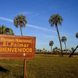 El Palmar de Entre Ríos podrá contar con energìa renovable en todas sus instalaciones.