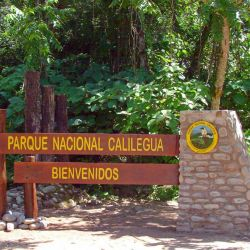 El proyecto, que abarca al Parque Calilegua de Jujuy, demandará una inversión de 375 millones de pesos.