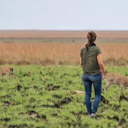 Alicia Delgado es bióloga y trabajó años en la reintroducción del venado de las Pampas en Iberá.