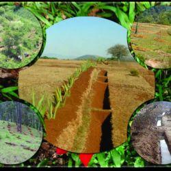 El objetivo central de esta fecha es el de concientizar a la humanidad sobre la gran importancia que tiene la tierra dentro del frágil equilibrio medio ambiental.