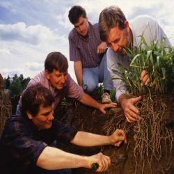 La fecha se celebra en memoria del científico estadounidense Hugh Hammond Bennett, precursor en la defensa del suelo.