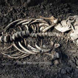 Los arqueólogos tambièn encontraron depósitos de carbón y ataúdes parcialmente quemados.