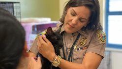 Binx, el gato que sobrevivió al derrumbe en Miami