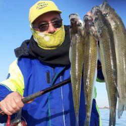 En nuestro caso visitamos el pesquero Luis Rovea.