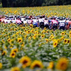 Los ciclistas marchan durante la 14ª etapa de la 108ª edición del Tour de Francia de ciclismo, de 183 km entre Carcassonne y Quillan. | Foto:Thomas Samson / AFP