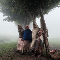 Unos niños permanecen bajo un árbol en el emplazamiento de un futuro campamento para refugiados eritreos, en una zona rural cerca de la aldea de Dabat, a 70 kilómetros al noreste de la ciudad de Gondar, Etiopía. | Foto:Eduardo Soteras / AFP