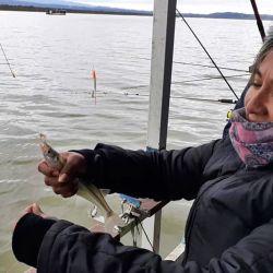 Te contamos algunos destinos para pescar.