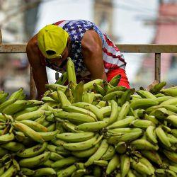 Un cubano con una camiseta con la bandera de Estados Unidos descarga plátanos para su venta en La Habana.   Foto:Yamil Lage / AFP