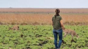 Rewilding Argentina