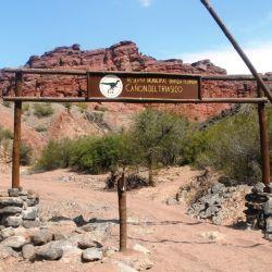 El Cañón del Triásico, ubicado en el riojano departamento de Felipe Varela, se recorre en excursiones 4x4 diurnas y nocturnas.