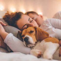 El llamado Gen Mcr-1 puede transmitirse de perros a humanos