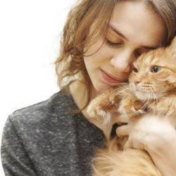 Ninguno de los gatos examinados portaba ese gen peligroso para la salud de los humanos.