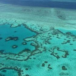La Gran Barrera de Coral está ubicada frente a la costa noreste de Australia.