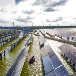 Esta foto muestra a trabajadores eléctricos en un barco mientras revisan los paneles solares en una estación de energía fotovoltaica construida en un estanque de peces en Haian, en la provincia oriental china de Jiangsu.   Foto:STR / AFP