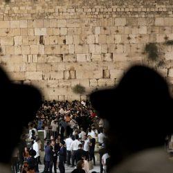 Hombres judíos ortodoxos rezan y leen el libro de Eicha (Libro de las Lamentaciones) en el Muro Occidental de la Ciudad Vieja de Jerusalén.   Foto:Gil Cohen-Magen / AFP
