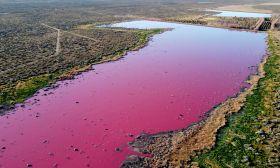 pink lagoon chubut