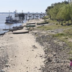 La gran bajante del río Paraná llevó al Gobierno nacional a declarar la emergencia hídrica de la cuenca.