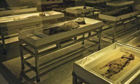 chilean mummies