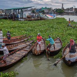 Unos barqueros retiran el jacinto del agua que bloquea su camino en el río Buriganga, cerca de Dhaka, Bangladés. | Foto:Munir Uz zaman / AFP