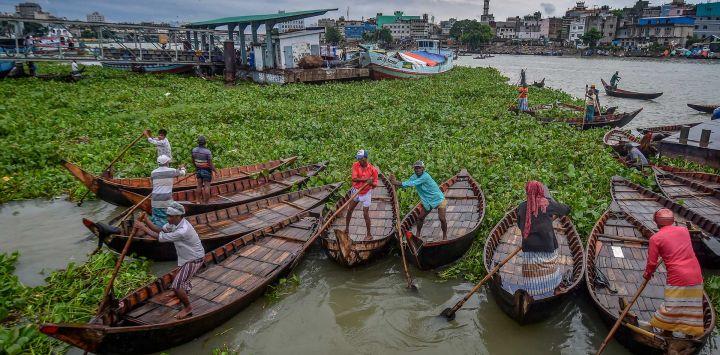 Unos barqueros retiran el jacinto del agua que bloquea su camino en el río Buriganga, cerca de Dhaka, Bangladés.