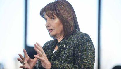"""Liderazgo. La presidenta del PRO cree que en la """"biodiversidad"""" del partido y apunta al 2023."""