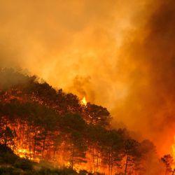En el día de ayer, los bomberos de España lograron combatir el fuego que se habìa desatado en la tarde del sábado 31 de julio en las cercanías del pantano de San Juan, ubicado a tan solo 70 kilómetros al este de Madrid.