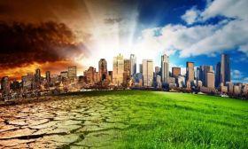 Ecocidio 2010803
