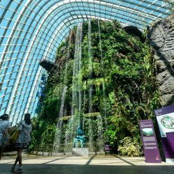 This photograph taken on July 26, 2021 shows a view inside the Cloud Forest at Gardens by the Bay in Singapore. Green spaces have also been shown to improve health and wellbeing, including reducing stress, anxiety and depression, improving attention and focus, better physical health and managing Post Traumatic Stress Disorder.