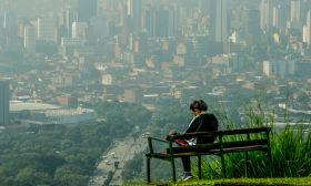 Medellín cities urban jungle