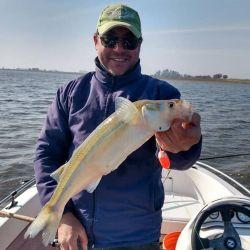 Dónde ir por buen pique de pesca el fin de semana del 6 de agosto de 2021