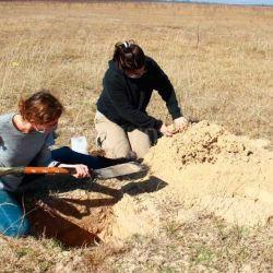 El hallazgo tuvo lugar en la margen este de la laguna Setúbal.