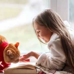 La fecha busca sensibilizar a sus dueños acerca de la importancia de los cuidados que los gatos requieren a lo largo de toda su vida.