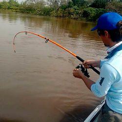 Los pescadores comerciales que cuenten con los debidos permisos actualizados a la fecha, podrán continuar con sus respectivas actividades e