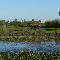 Serà la tercera reserva natural de la provincia de Entre Ríos.
