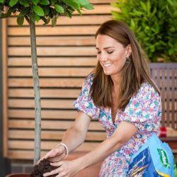 Kate Middleton y sus vestidos corte midi perfectos para primavera