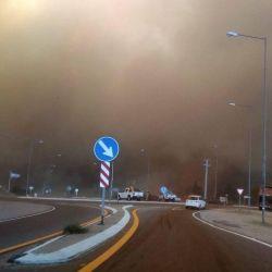 El fuego arrasó con lo que encontraba a su paso en Potrerillos.