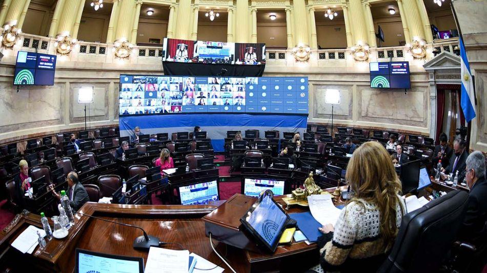 Sesión del senado-20210819