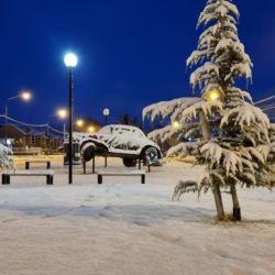 Tanto las casas como las calles, plazas y los autos amanecieron totalmente cubiertos de blanco.
