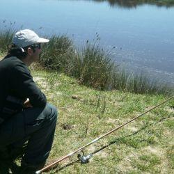 Dónde ir por buen pique de pesca el fin de semana del 27 de agosto de 2021