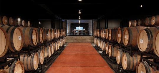 Una historia de vinos que se renueva