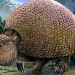 El gliptodonte se extinguió hacia finales del Pleistoceno y comienzos del Holoceno, hace unos 10.000 años atrás.