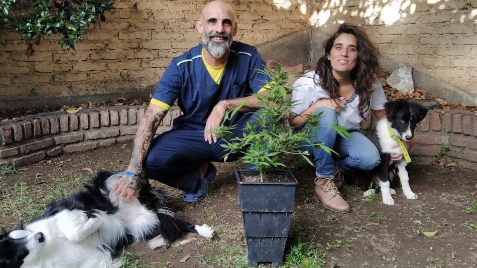 José Massabo y Paula Lescano visibilizan el uso terapéutico del cannabis en animales no humanos